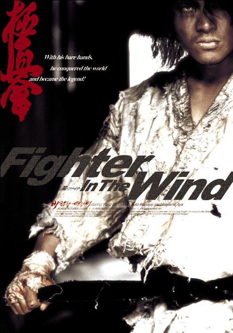 Risultati immagini per Fighter in the Wind