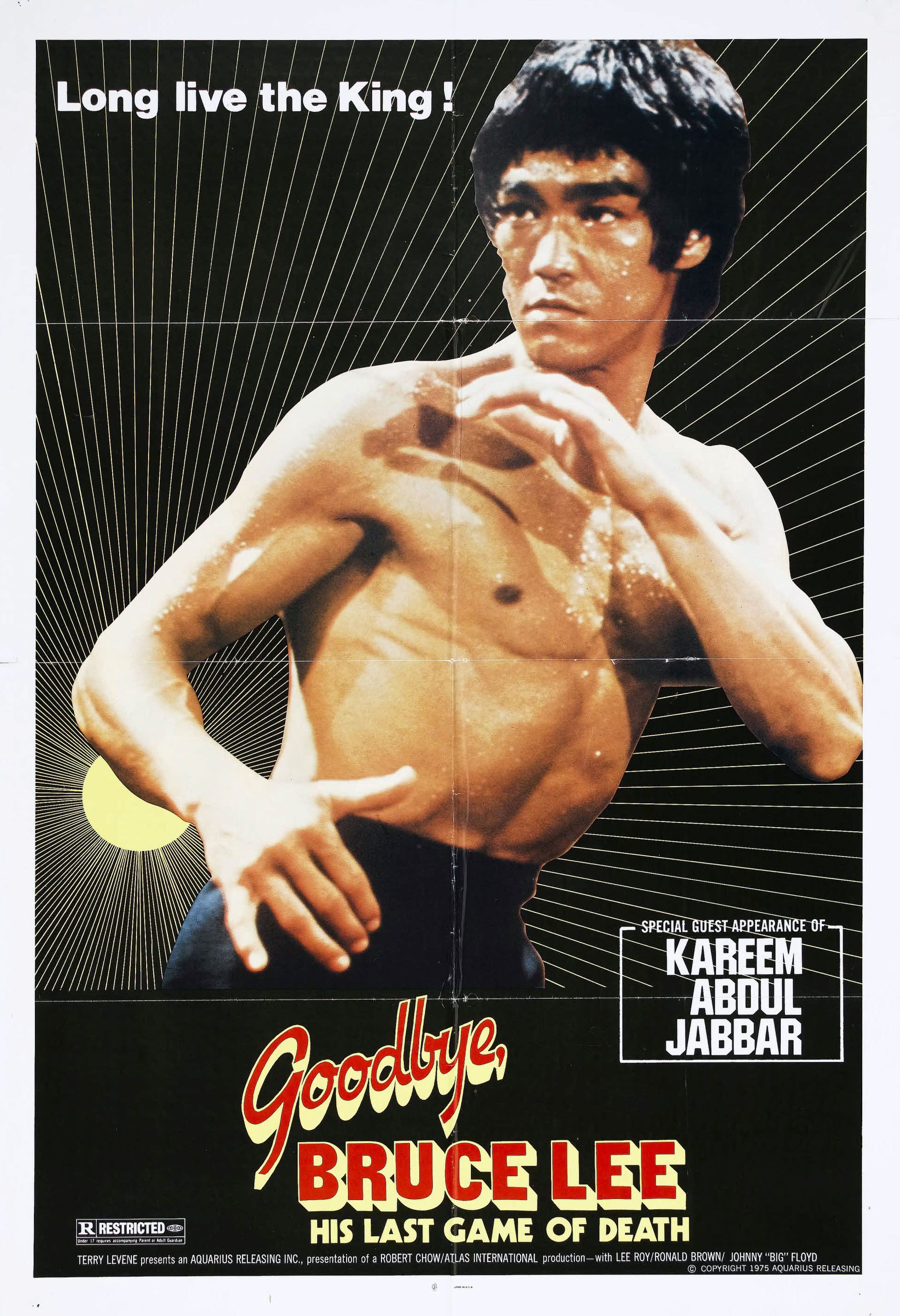New game of death aka goodbye bruce lee his last game of death