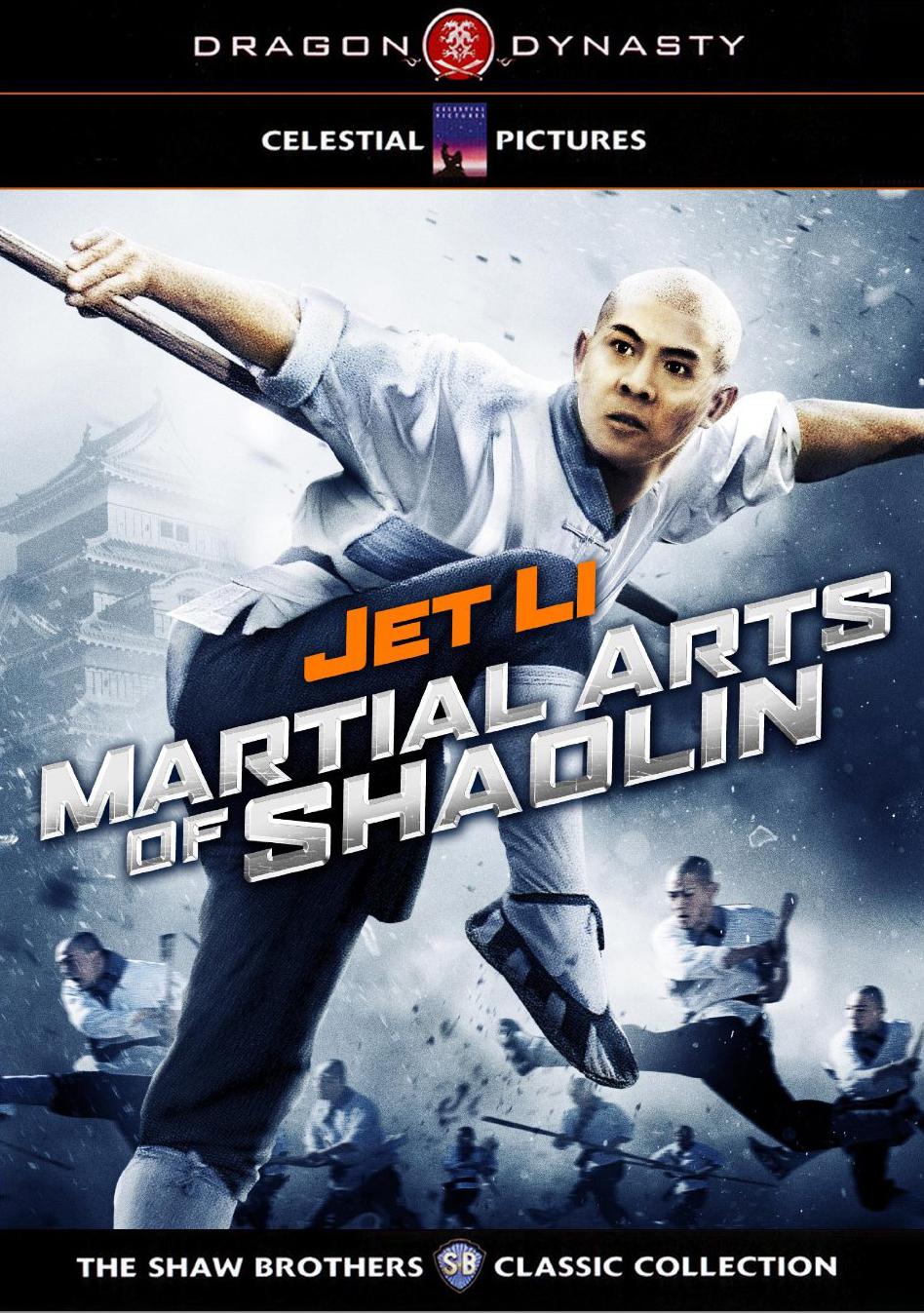 Confirm. shaolin martial arts consider