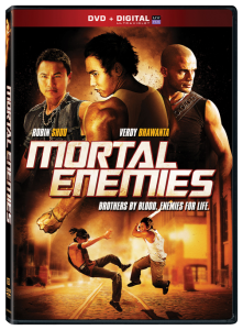 Mortal Enemies | aka Pirate Brothers DVD (Lionsgate)