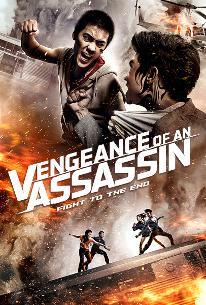 Vengeance Of An Assassin (2014) Bluray